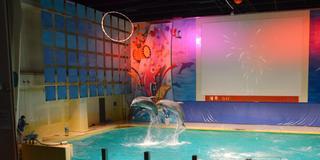 浅虫温泉で水族館&グルメも堪能しちゃおう!