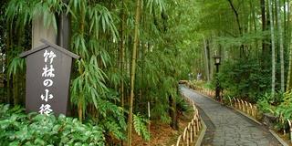 秋の欲張り京都女子旅♡