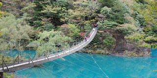 【定番の観光スポット】川根本町に来たら、この8カ所はお見逃しなく!