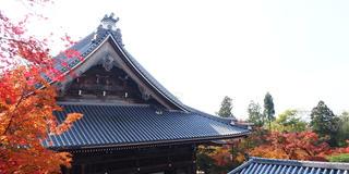 世界観光都市ランキング1位!秋の京都で本気で紅葉狩りしてみました!写真から感じてください♪