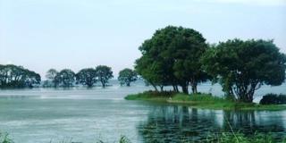 琵琶湖一周ポタリング(ビワイチ)