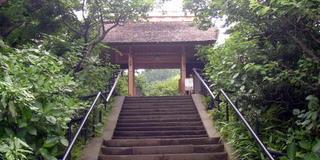 鎌倉の花の寺で秋満喫、北鎌倉東慶寺から亀ヶ谷切通しを抜けて、海蔵寺へ。小町通でランチ♪