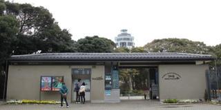 江ノ島★生しらす丼&パンケーキスイーツグルメロード♡