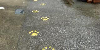 細い道に惹かれちゃう!宮崎路地裏散歩