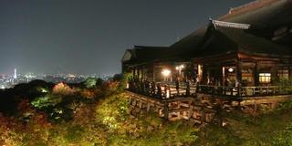 ライトアップされた夜の清水寺へ!