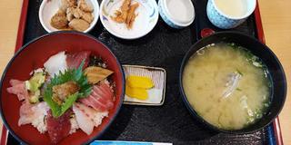 【宮崎市民向け:日帰り】海を満喫!日南海岸ドライブ&海の幸を食べるモデルコース