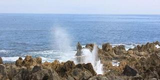 【気仙沼】観光パンフレットでは紹介されない気仙沼を巡る(入門編)
