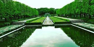ただ広いだけではない昭和記念公園