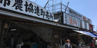 極めてる⁉︎ 鎌倉で見つけた〇〇専門店の旅