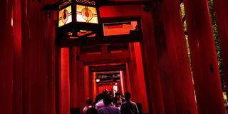 京都に来てから行きたいところを決めた