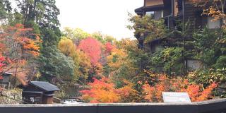 ミシュランで二つ星☆☆日本が誇る熊本阿蘇の黒川温泉と周辺観光スポット。