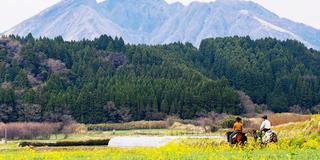 【阿蘇 高森】親子にオススメ☆高森で自然と自然の恵みを体感・体験