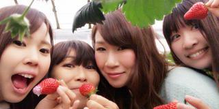 女子旅 珍道中-。神奈川〜山梨