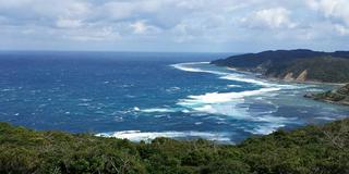 天国に一番近い島?奄美大島 その2