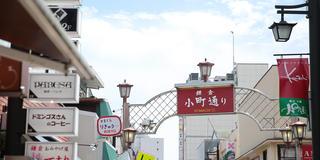 鎌倉・江ノ島大満足プラン!デートにも!友達にも!✨インスタ映えもばっちり👌