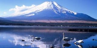 山中湖・河口湖で富士山とスイーツと手作り体験を楽しむ旅