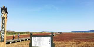 北海道観光!3泊4日の旅♡3日目&4日目(最終日)編