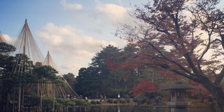 【金沢】1泊2日〜紅葉&スイーツを楽しむ旅〜