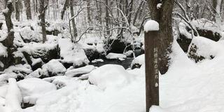 冬の十和田・八戸旅