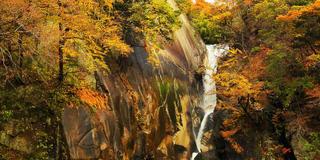 東京から日帰り。昇仙峡で紅葉の旅withわんこ