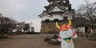 ひこにゃんに会いに彦根城へ