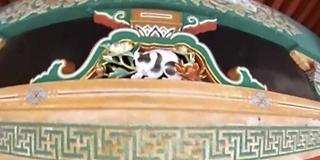 晩夏の栃木 史跡と自然と動物と