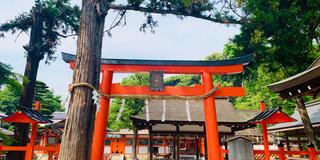 神仏巡り❁京都市左京・東山区(随時更新)