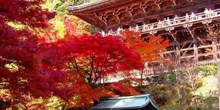 西の清水寺を満喫。ゆるりハイキング