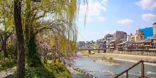 大満喫✈️京都旅