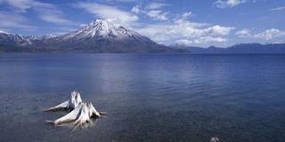 支笏湖にぜひ!気持ちのデトックスできますよー。