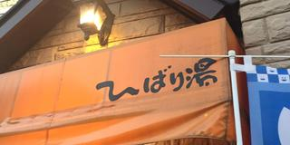 湘南でラン二ング