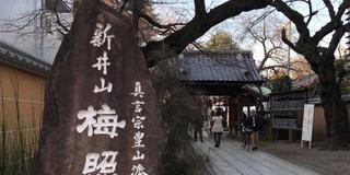【新井薬師】初詣さんぽ🍘