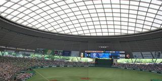 唯一無二の屋根付きドームで自然を感じながら野球観戦