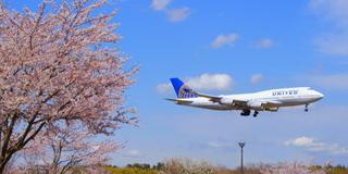 飛行機と桜のコラボレーション!WELCOME TO NARITA!