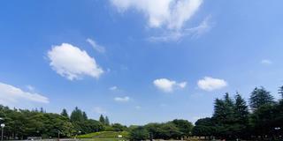 【三宿】都会でみんな大好きピクニックをしよう♡