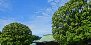 【原宿〜青山】手をつないでのんびり散策。大人向けデートプラン。