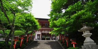 夏の京都でいい汗かこう!