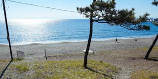 【おひとりさま葉山ぶらり旅プラン】ぼーっとするのに最高な海辺の街です!