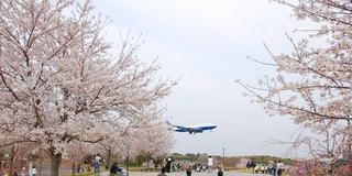 千葉県 成田空港周辺 飛行機ビュースポット!!