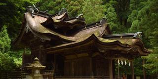 日本三大和紙の里「越前和紙」で紙漉き体験と神社巡り