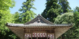 【京都・美山】隠れスポット!神社&寺院巡り