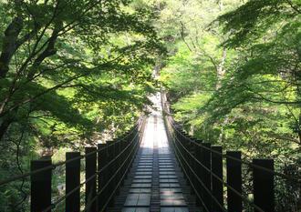 新緑と常陸秋そばを巡る奥茨城旅