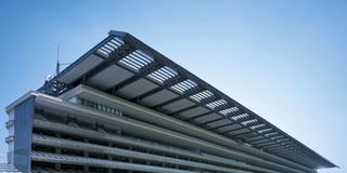 緑の芝生を吹き抜ける蒼い風に包まれて…晴天の東京競馬場で過ごす爽やかな週末