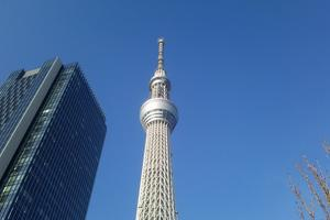 東京スカイツリー展望台から関東平野を一望