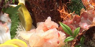 《更新中》熊本の情報番組サタブラ推薦!ランチ&ディナーにオススメな和食が食べれるお店♪
