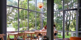 江津湖の�ほとりで、自然を見ながらくつろげるカフェ♪