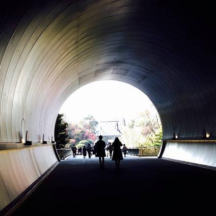 ミホミュージアム(バス)