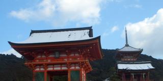 清水の舞台から飛び降りる思い?京都・祇園界隈を練り歩く