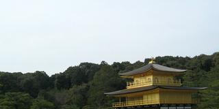 大人の修学旅行、金閣寺とその界隈。