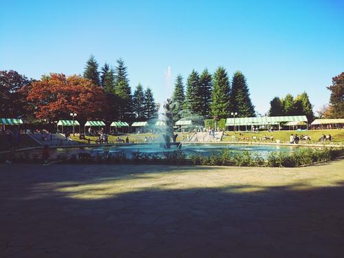 【都内】ゆっくりとした時間が流れる公園まとめ